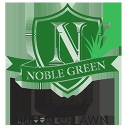 Noble Green Buffalo Grass